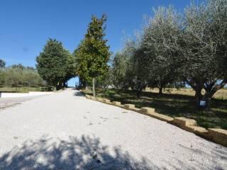 Foto - Casa indipendente via Padri Passionisti, Morrovalle