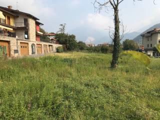 Foto - Terreno edificabile residenziale a Luzzana