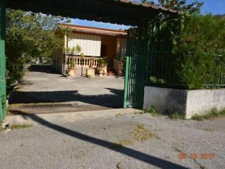 Foto - Villa, buono stato, 100 mq, Case Del Conte, Montecorice