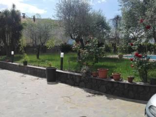 Foto - Bilocale ottimo stato, piano terra, Cassino
