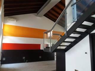 Immobile Affitto Udine