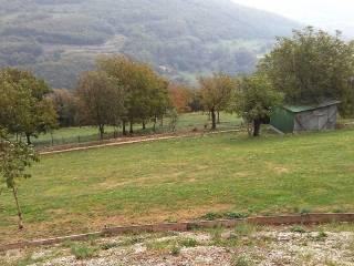 Foto - Terreno agricolo in Vendita a Sant'Anna d'Alfaedo