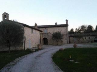 Foto - Rustico / Casale all'asta Località Santa Giuliana, Pierantonio, Umbertide