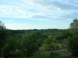 Foto - Terreno edificabile residenziale a Castelfiorentino