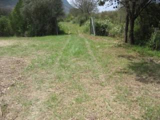Foto - Terreno agricolo in Vendita a San Felice Circeo