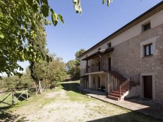 Foto - Rustico / Casale Strada Fonte dei Rossi, Vallecchie, Pastena