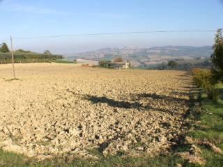 Foto - Terreno agricolo in Vendita a Montecosaro