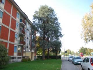 Foto - Appartamento via del Pioppo 34, Stadio, Udine