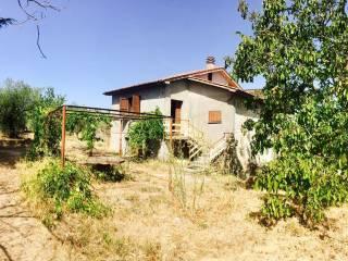 Foto - Rustico / Casale località ficuccia, -1, Caprarola