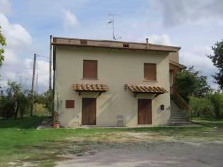 Foto - Casa indipendente Strada Provinciale dell'Esse, Monte San Savino