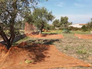 Foto - Terreno agricolo in Vendita a Sassari