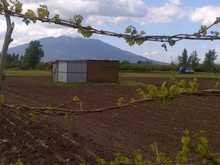 Foto - Terreno agricolo in Vendita a Nola