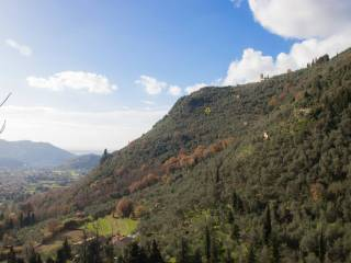 Foto - Rustico / Casale via Greppolungo, Camaiore