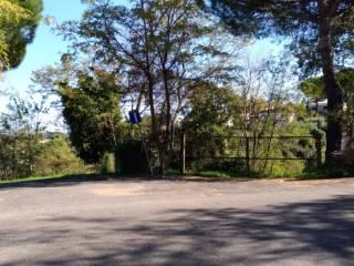 Foto - Terreno edificabile residenziale a Monte Porzio Catone