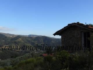 Foto - Rustico / Casale, da ristrutturare, 1020 mq, Dolceacqua
