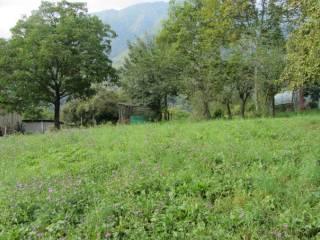 Foto - Terreno edificabile residenziale a San Giovanni Bianco