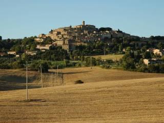 Foto - Terreno edificabile residenziale a Casale Marittimo