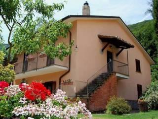 Foto - Albergo / Struttura ricettiva all'asta Strada Provinciale Lago di Vico, Caprarola