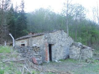 Foto - Rustico / Casale Strada Provinciale della Verna 17, Biforco, Chiusi della Verna