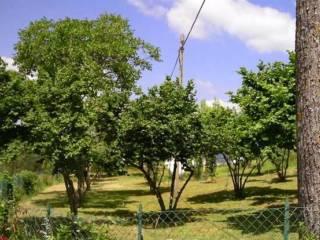 Foto - Casa indipendente 90 mq, buono stato, Cantiano