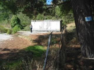 Foto - Terreno agricolo in Vendita a Santa Maria Nuova