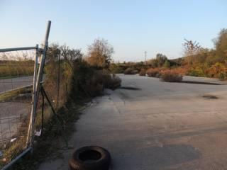 Foto - Terreno agricolo in Vendita a Grosseto