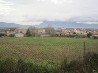 Foto - Terreno agricolo in Vendita a Piedimonte San Germano