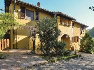 Attività / Licenza Vendita San Gimignano