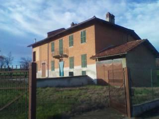 Foto - Rustico / Casale, da ristrutturare, 280 mq, Montiglio Monferrato