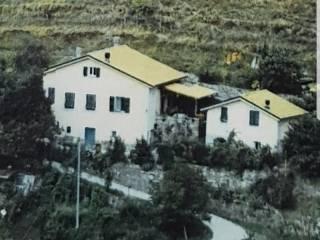 Foto - Rustico / Casale Località Montevecchio, Malanotte, Varese Ligure