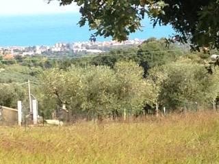 Foto - Terreno edificabile residenziale a Torrevecchia Teatina