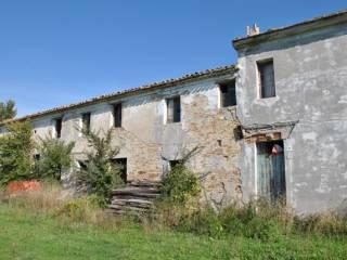 Foto - Rustico / Casale, da ristrutturare, 550 mq, Morro d'Alba