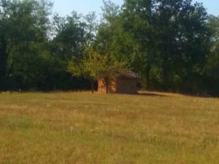 Foto - Terreno agricolo in Vendita a Borgonovo Val Tidone