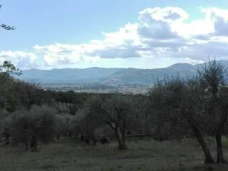 Foto - Terreno agricolo in Vendita a Sala Consilina