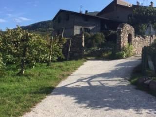 Foto - Casa indipendente frazione Parlo, Segonzano