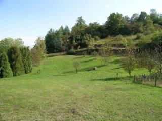 Foto - Terreno agricolo in Vendita a Pino Torinese