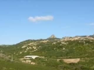 Foto - Terreno agricolo in Vendita a Arzachena