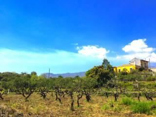 Foto - Villa via Rina, 32, Santa Venerina