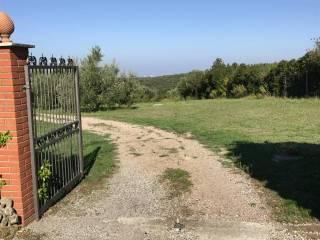 Foto - Terreno agricolo in Vendita a Livorno