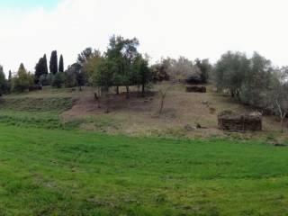 Foto - Terreno agricolo in Vendita a Camaiore
