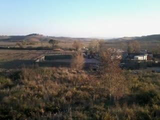 Foto - Terreno agricolo in Affitto a Asciano