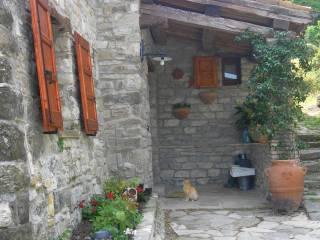 Foto - Rustico / Casale Località Le Porte, Località Sartiano, Novafeltria