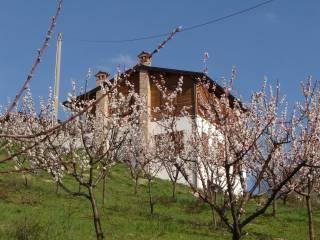 Foto - Rustico / Casale vigoleno, Vernasca