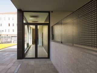Torino Precollina, Collina