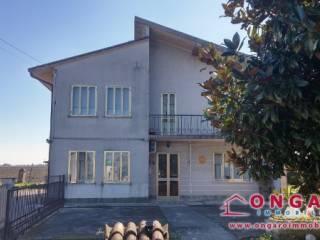 Photo - Single-family townhouse via Provinciale per Formignana, Copparo