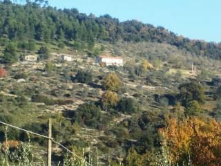 Foto - Rustico / Casale, buono stato, 220 mq, Arce
