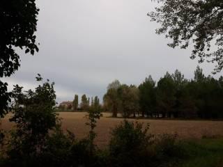 Foto - Terreno agricolo in Vendita a Fano