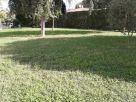 Appartamento Vendita Piazzola sul Brenta