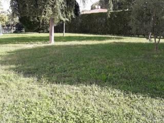 Foto - Monolocale via Padova Bassano, Piazzola sul Brenta