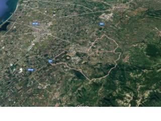 Foto - Terreno edificabile industriale a Latina